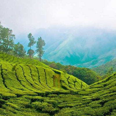 Arooha Holidays Enchanting Kerala